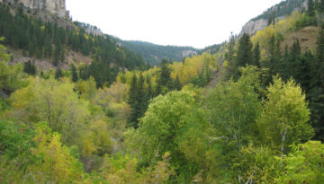 spearfish_canyon3