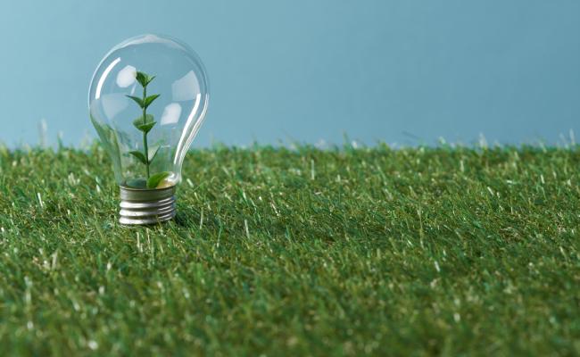 Greening Our Faith